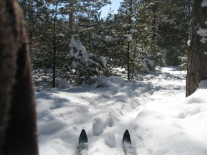 Cross-country skiing in Marquette County