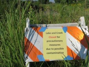 Duck pond contaminated