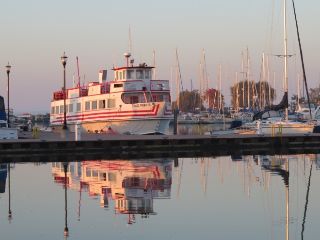 Our ship, the Island Princess