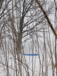 Sled on a snowy day, Huntley Illinois